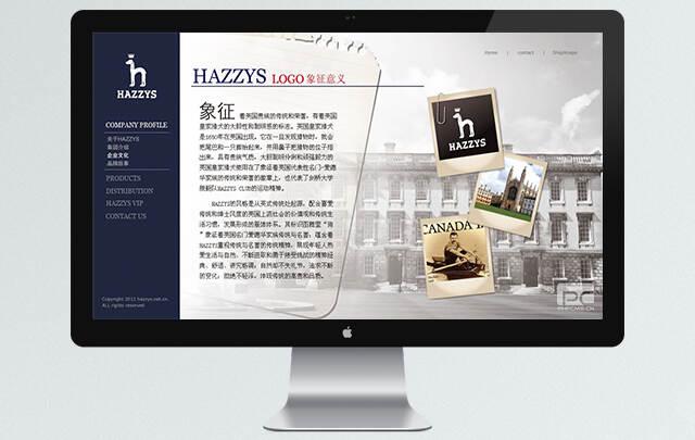 企业网站设计 网站设计